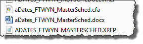 Custom Reports are comprised of three files. The name of the files doesn't matter (we use a naming convention for Tech Support) but your orchestra's initials will likely be in the middle of the name.