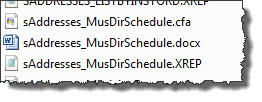 Word Reports are comprised of three files. The names of the files doesn't matter (we use a naming convention for Tech Support)